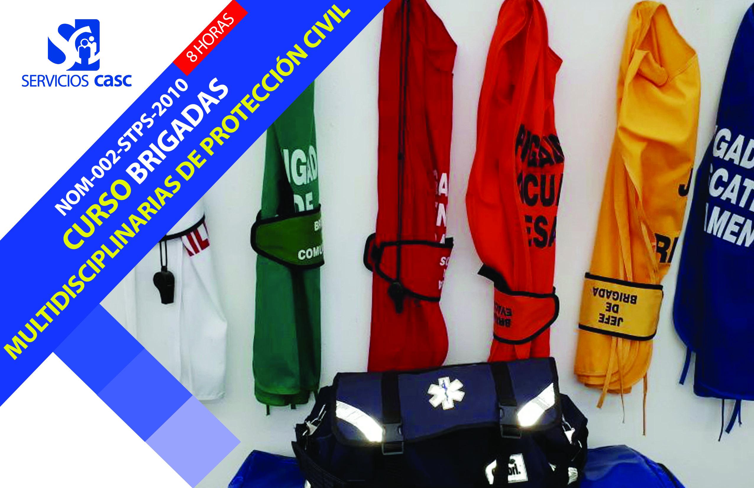 Brigadas Multidisciplinarias de Protección Civil